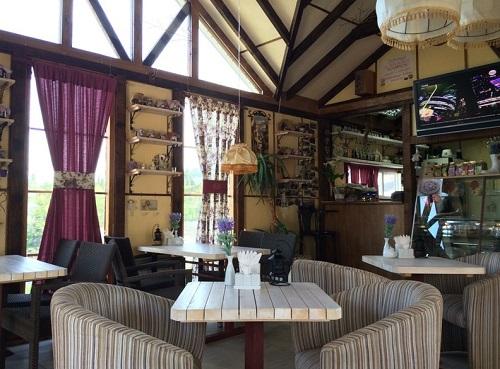 Кафе Прованс в Рыбачьем