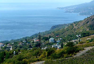 Олива (Мухалатка, Крым)
